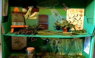 Les cabinets de curiosités en arts plastiques
